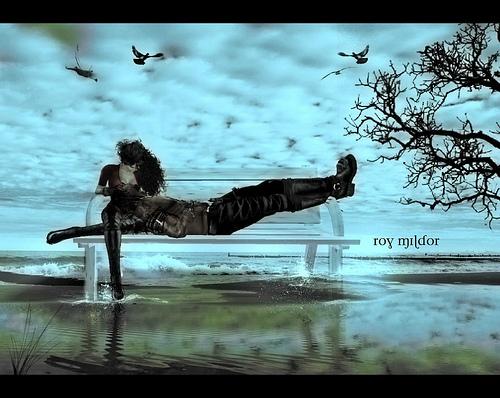 Roy Mildor 2