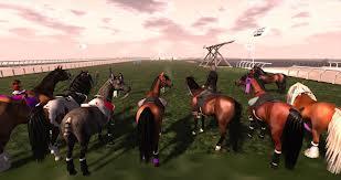 My Pics - horses 1